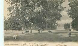 Chateau De Mery - Le Parc - Vaches      Q 792 - Mery Sur Oise