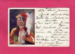 ETATS-UNIS, COLORADO, POOR UM, A UTE BRAVE, DENVER, (Art Souvenir Syndicate), Colorisée, Indien, 1904, Pliures - Denver