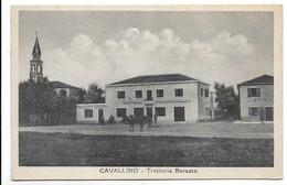 Cavallino (Venezia). Trattoria Borsato. - Venezia