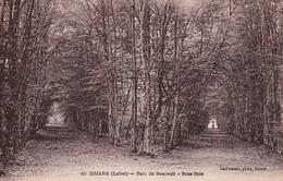 Briare Parc De Beauvoir Sous Bois - Briare