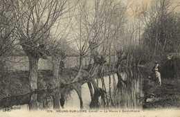 MEUNG SUR LOIRE (Loiret) La Mauve à St Hilaire Arbres Traitées En Tetards RV - France