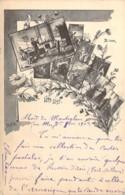 RUSSIE RUSSIA  1799-1899 100 Ans Naissance POUCHKINE Ses Oeuvres Carte Illustrée Précurseur  Пушкин - Russland