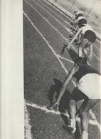 43-Fascismo-Stampa Tema: Sport::Corsa E Pugilato-cm.23,5 X 32,5 Da Realizzare Poster - Sport