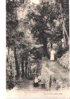 FR66 PRATS DE MOLLO - LA PRESTE - Labouche 994 - Le Parc - Animée - Belle - France
