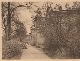 Anvers  Hôpital Militaire -Une Rangée De Pavillons Dans Les Jardins  - Krijgsgasthuis Van Antwerpen - - Antwerpen