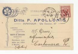 4488 MANTOVA APOLLONIO TIPOGRAFICO X CARBONARA PO - 1900-44 Victor Emmanuel III.