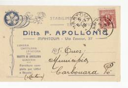 4488 MANTOVA APOLLONIO TIPOGRAFICO X CARBONARA PO - Marcophilie