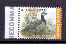 Belgie - 2020 - OBP  - ** Brandgans - A Buzin ** - Belgique