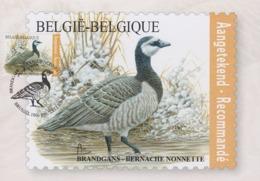 """Maximumkaart Bpost """"Brandgans"""" Met Stempel 1ste Dag Brussel-Bruxelles - 1985-.. Oiseaux (Buzin)"""