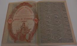 Titre Ancien - La Coloniale Industrielle -Titre De 1899 - Déco N°033837 - VF - Afrique
