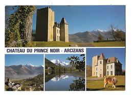 65-----ARCIZANS--château Du Prince Noir--le Village Et Le Lac D'ARCIZANS-DESSUS--voir 2 Scans - Autres Communes