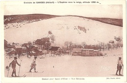 Dépt 30 - VALLERAUGUE - L'Espérou Sous La Neige - Station Sport D'Hiver - Vue Générale - (Édit. Pauzié, Tabacs) - SKI - Valleraugue