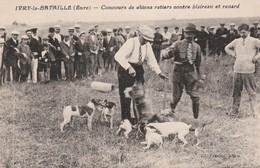 CPA:CONCOURS DE CHIENS RATIERS CONTRE UN BLAIREAU ET RENARD IVRY LA BATAILLE (27) - Ivry-la-Bataille