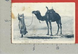 CARTOLINA NV ALGERIA - BISKRA - La Priere Au Desert - 9 X 14 - 1930 - Scene & Tipi