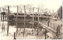 """Dépt 32 - ESTANG - Le Bassin Du Pesque - Les Arènes - (Éditeur : """"MYS"""") - CPSM 8,8 X 13,7 Cm - PÊCHEUR - France"""