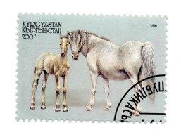 KYRGYZSTAN»1995»USED - Kirgisistan