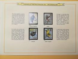 PAGINA PAGE ALBUM GRAN BRETAGNA GREAT BRITAIN 1980 PROTECTION BIRD UCCELLI DESCRIZIONE PAGES WITH DESCRIPTION - Collezioni