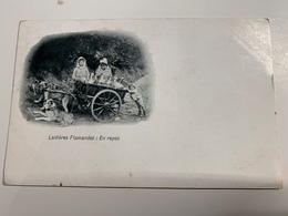 Cp Laitières Flamandes  En Repos  1919 - Ambachten