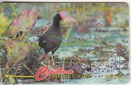 ANTIGUA & BARBUDA(GPT) - Bird, Common Moorhen, CN : 104CATA(Ls, Normal 0), Tirage %30000, Used - Antigua And Barbuda