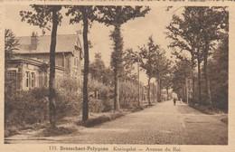 Brasschaet - Polygone , Brasschaat , Koningslei  , Avenue Du Roi  ,( N° 135 , Hoelen , Cappellen ) - Brasschaat