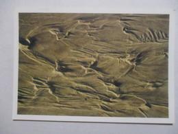 RARE CPM CPSM CP MANCHE 50 SCIOTOT 1997 - TRACES DE MER A SCIOTOT / PHOTO GILLES BION - ED VILLE DE CHERBOURG TBE - France
