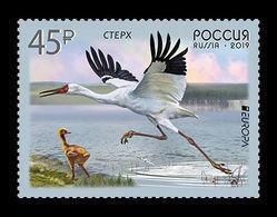 Russia 2019 Mih. 2654 Europa. Fauna. National Birds. Siberian Crane MNH ** - 1992-.... Fédération