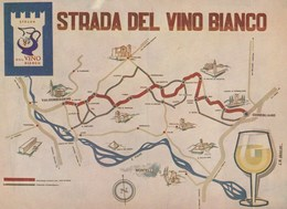 Agricoltura - Vigne - Conegliano-Valdobbiadene (TV)  - Strada Del Vino Bianco - - Vigne