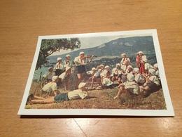 SCH3599 Russia Russie USSR URSS Ganzsache Stationery Entier Postal P 219II Artek Pionierlager Musik - 1950-59
