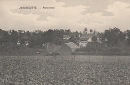 JAUCHELETTE ,( Jodoigne , Incourt )  , Panorama - Jodoigne