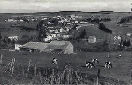 Luxembourg  -   Niederwampach - Schimpach  -  E.A.Schaack , Luxembourg - Cartoline