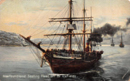 R280160 Newfoundland Sealing Fleet Off To Icefields. W. E. Hebb. 1941 - Postcards