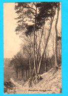 CPA BOURGEOIS ( Rixensart ) Ravin Du Belloy Animée - Circulée En 1921 - Papeterie Charlier-Niset, Wavre - 2 Scans - Rixensart