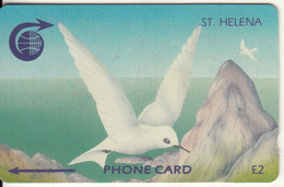 ST. HELENA ISL.(GPT) - White Tern, CN : 3CSHA, Tirage 2000, Used - St. Helena Island