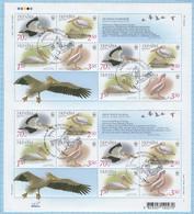 UKRAINE / Stamps With  FDC - CTO / WWF. Enviroment Protection.  Pelican Pink. Fauna. Birds 2007 - Ukraine