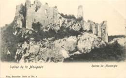 Belgique - Vallée De La Molignée - Ruines De Montaigle- Nels Série 22 N° 2 - Onhaye