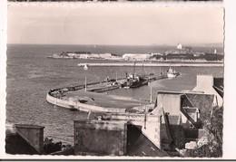 Roscoff: Vue Plongeante Sur Le Port - - Roscoff