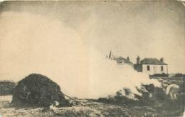 Dépt. 29, Carte Sans Légende à Situer, Brûlage De Goémon, Femme Avec Chien En Avant, Pas Courante - France