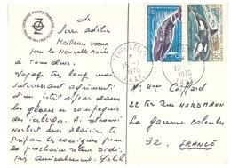 TAAF CARTE PEV 1979 - Tierras Australes Y Antárticas Francesas (TAAF)