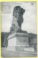 0469 - BELGIE - LUIK - GILEPPE - LE LION DE LA GILEPPE - Gileppe (Barrage)