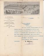 Bordeaux - H.Monserviez / Fabrique Instruments Viticoles Et Vinicoles - France