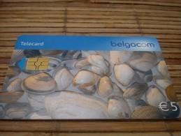 Phonecard Shelpjes  Used - Avec Puce