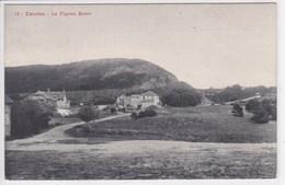 50 CAROLLES Le Pignon Butor - France
