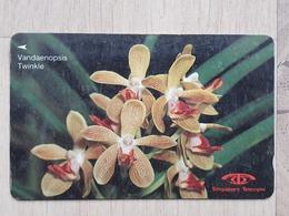 Telefonkarte - Singapur - Mit Darstellung Einer Orchidee - Blumen