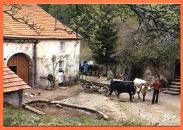88 Vosges Vie Ferme Dans Les Hauts Carte 2 Volets 12 X 17 Vieux Metiers Boeufs Charrette Cour De Ferme Paysans Ste6789 - Autres Communes