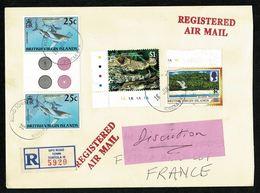 ILES VIERGES VIRGIN ISLANDS GB Lettre Recommandée Superbe Affranchissement ROAD TOWER TORTOLA 16 JANV 2003 2 Scan - Iles Vièrges Britanniques