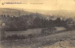 Pensionnat De Grand-Halleux - Panorama Pris Du Nord - Vielsalm