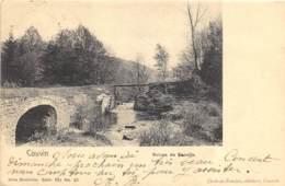 Couvin - Ruines De Renelle - Nels Série 103 N° 23 - Couvin