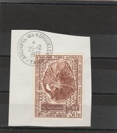 TAAF Yvert PA 22 Oblitéré Sur Fragment  Archipel Des Kerguelen 25/12/1972 - Météo Amsterdam - Tierras Australes Y Antárticas Francesas (TAAF)
