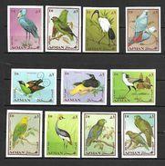 Ajman 1969 Birds IMPERFORATE MNH (T0091) - Adschman