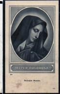 Heylen Jan Baptist Wed Wellens Maria Leonia Ere-schoolhoofd °1855 Wolfsdonk +1942 Aarschot - Esquela